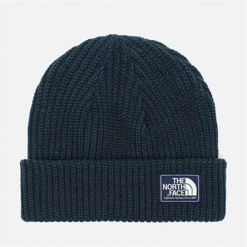 Шапка THENORTHFACE T93FJWH2G SALTY DOG BEANIE  URBAN NAVY - фото 6525