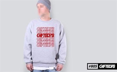 """Свитшот """"GIFTED"""" FX18/805 светло-серый"""