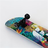 Скейтборд в сборе Footwork TROPICAL Размер 8 x 31.5 - фото 12510
