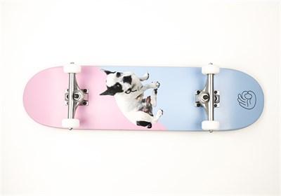 Скейтборд в сборе ALL TIME Boner Boy New 8.20 X 31.30